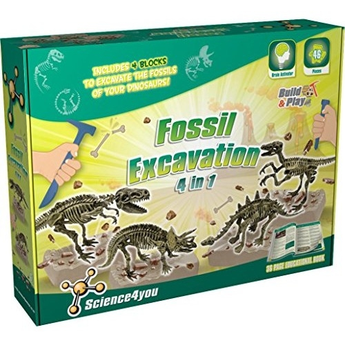 Science 4 You Fossil Excavation - 4 In 1