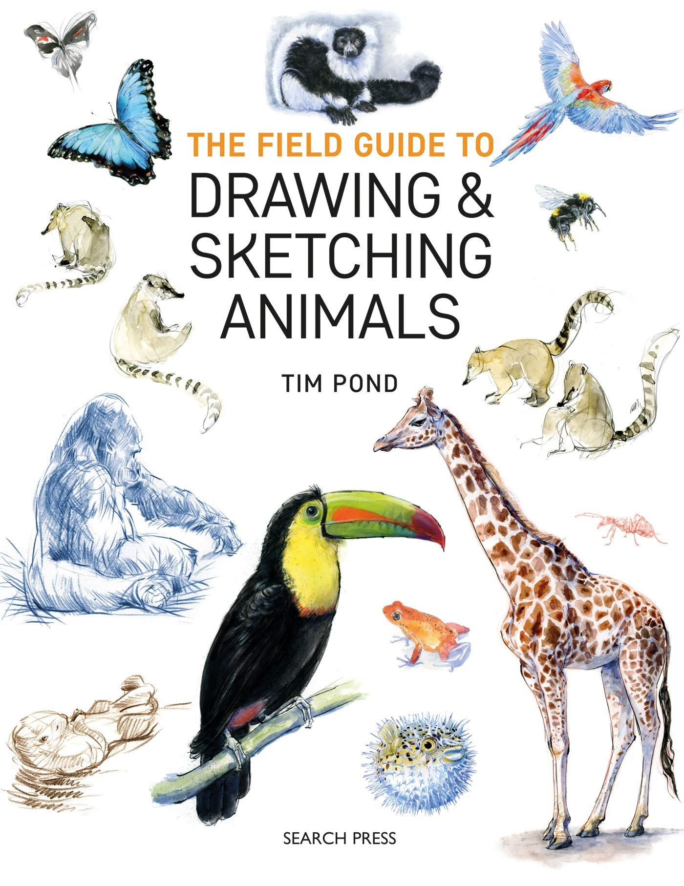 Sp  - Field Guide To Drawing & Sketching