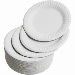 "6"" Paper Plates (100)"